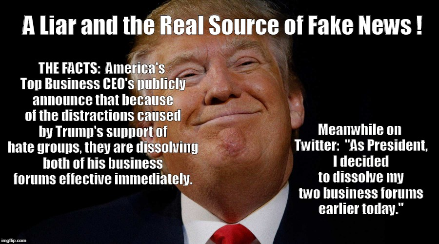 THE FACTS:  America's Top Business CEO's publicly announce that because of the distractions caused by Trump's support of hate groups, they a | image tagged in trumptheliar | made w/ Imgflip meme maker