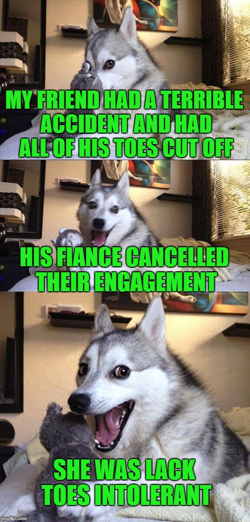 It's a terrible disease | MY FRIEND HAD A TERRIBLE ACCIDENT AND HAD ALL OF HIS TOES CUT OFF HIS FIANCE CANCELLED THEIR ENGAGEMENT SHE WAS LACK TOES INTOLERANT | image tagged in memes,bad pun dog,lack toes,lacktose | made w/ Imgflip meme maker