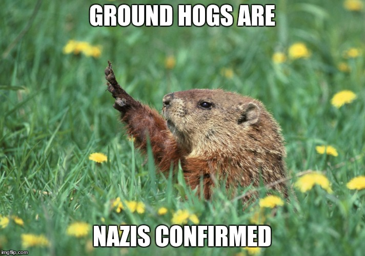 Nazis are in the animal kingdom | GROUND HOGS ARE NAZIS CONFIRMED | image tagged in nazis,nazi,ground hog,animal,animals,funny | made w/ Imgflip meme maker