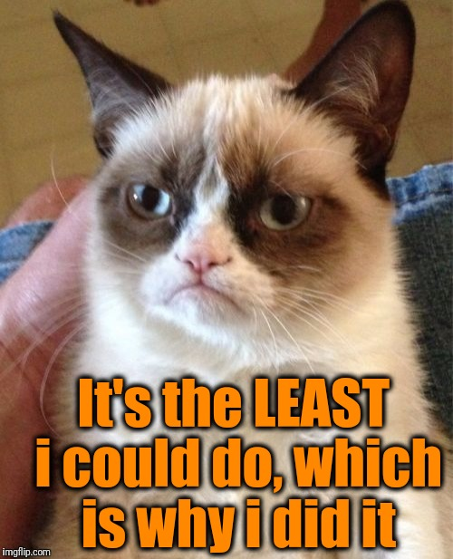 Grumpy Cat Meme | It's the LEAST i could do, which is why i did it | image tagged in memes,grumpy cat | made w/ Imgflip meme maker