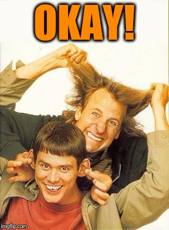 DUMB and dumber | OKAY! | image tagged in dumb and dumber | made w/ Imgflip meme maker