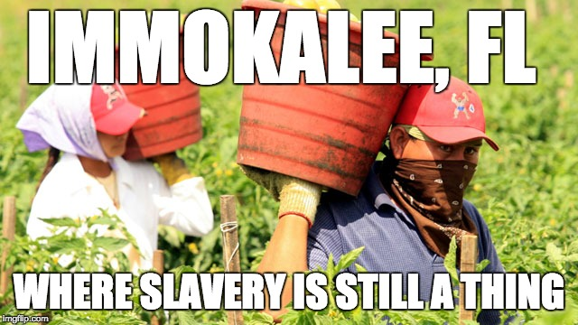 IMMOKALEE, FL WHERE SLAVERY IS STILL A THING | made w/ Imgflip meme maker