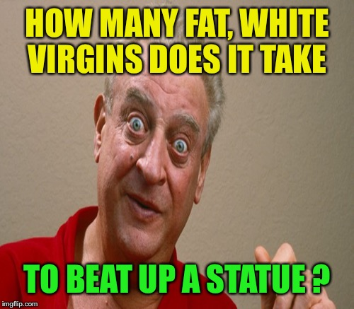 HOW MANY FAT, WHITE VIRGINS DOES IT TAKE TO BEAT UP A STATUE ? | made w/ Imgflip meme maker