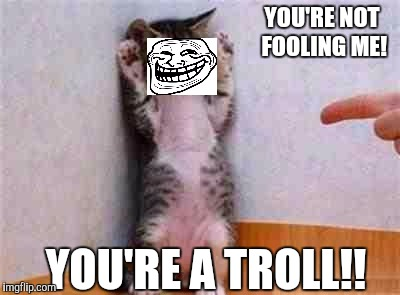 THEY'RE NOT ALL EQUALLY OBVIOUS :D | YOU'RE NOT FOOLING ME! YOU'RE A TROLL!! | image tagged in funny,coward cat,trolls,humor,imgflip,memes | made w/ Imgflip meme maker