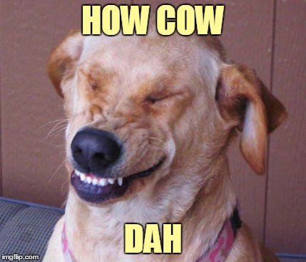 HOW COW DAH | made w/ Imgflip meme maker