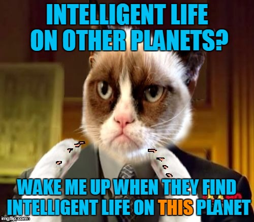 The search continues... (With thanks to Jying for merging the Grumpy Cat and Ancient Aliens templates.) | INTELLIGENT LIFE ON OTHER PLANETS? WAKE ME UP WHEN THEY FIND INTELLIGENT LIFE ON THIS PLANET THIS | image tagged in grumpliens memestrocity,jying,memes,grumpy cat,ancient aliens,grumpy cat is skeptical | made w/ Imgflip meme maker