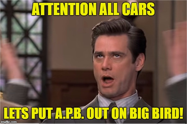 Oh my god | ATTENTION ALL CARS LETS PUT A.P.B. OUT ON BIG BIRD! | image tagged in funny,memes,jim,carrey,mariah | made w/ Imgflip meme maker