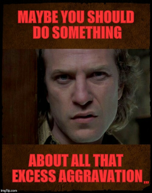 MAYBE YOU SHOULD DO SOMETHING ABOUT ALL THAT EXCESS AGGRAVATION ,,, | image tagged in buffalo bill are you serious?   | made w/ Imgflip meme maker