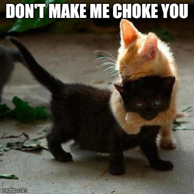 DON'T MAKE ME CHOKE YOU | image tagged in cat choke hold | made w/ Imgflip meme maker