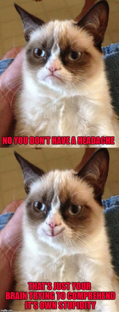 Just take two aspirin and quit being a dumbass... | NO YOU DON'T HAVE A HEADACHE THAT'S JUST YOUR BRAIN TRYING TO COMPREHEND IT'S OWN STUPIDITY | image tagged in grumpy cat 2x smile,memes,headaches,funny,grumpy cat,cats | made w/ Imgflip meme maker