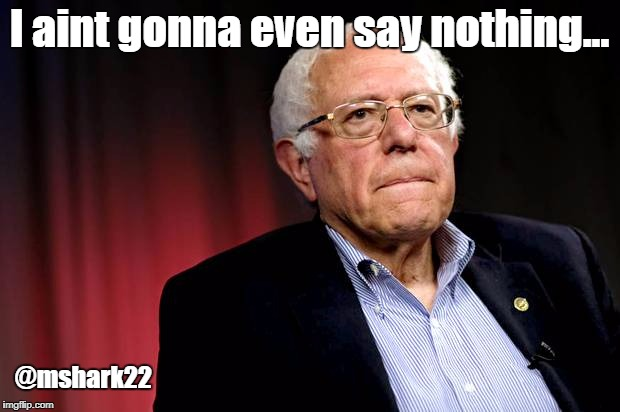 I aint gonna even say nothing... @mshark22 | image tagged in bernie sanders | made w/ Imgflip meme maker