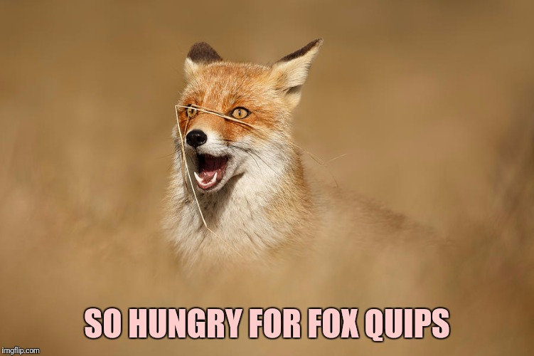 SO HUNGRY FOR FOX QUIPS | made w/ Imgflip meme maker