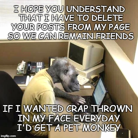 Political Postings | I HOPE YOU UNDERSTAND THAT I HAVE TO DELETE YOUR POSTS FROM MY PAGE SO WE CAN REMAIN FRIENDS IF I WANTED CRAP THROWN IN MY FACE EVERYDAY I'D | image tagged in memes,monkey business,politics online | made w/ Imgflip meme maker