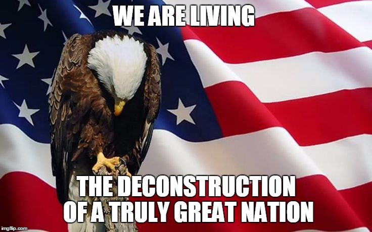 WE ARE LIVING THE DECONSTRUCTION OF A TRULY GREAT NATION | image tagged in veteran nation | made w/ Imgflip meme maker