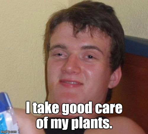 10 Guy Meme | I take good care of my plants. | image tagged in memes,10 guy | made w/ Imgflip meme maker