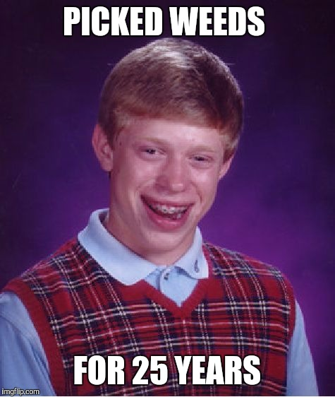 Bad Luck Brian Meme | PICKED WEEDS FOR 25 YEARS | image tagged in memes,bad luck brian | made w/ Imgflip meme maker