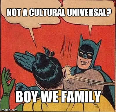 Batman Slapping Robin Meme | NOT A CULTURAL UNIVERSAL? BOY WE FAMILY | image tagged in memes,batman slapping robin | made w/ Imgflip meme maker