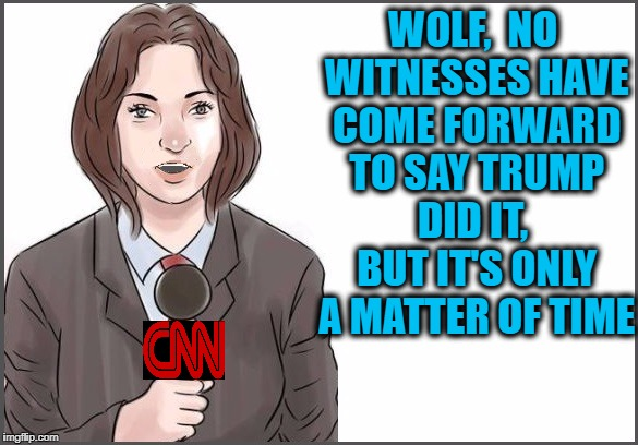 reporter | WOLF,  NO WITNESSES HAVE COME FORWARD TO SAY TRUMP DID IT,  BUT IT'S ONLY A MATTER OF TIME | image tagged in reporter | made w/ Imgflip meme maker