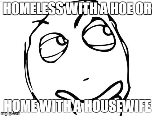 Question Rage Face |  HOMELESS WITH A HOE OR; HOME WITH A HOUSEWIFE | image tagged in memes,question rage face | made w/ Imgflip meme maker