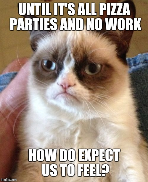 Grumpy Cat Meme | UNTIL IT'S ALL PIZZA PARTIES AND NO WORK HOW DO EXPECT US TO FEEL? | image tagged in memes,grumpy cat | made w/ Imgflip meme maker