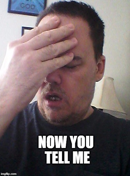 face palm | NOW YOU TELL ME | image tagged in face palm | made w/ Imgflip meme maker