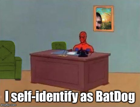 Spiderman At Computer Desk | I self-identify as BatDog | image tagged in spiderman at computer desk | made w/ Imgflip meme maker