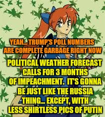 YEAH... TRUMP'S POLL NUMBERS ARE COMPLETE GARBAGE RIGHT NOW POLITICAL WEATHER FORECAST CALLS FOR 3 MONTHS OF IMPEACHMENT.  IT'S GONNA BE JUS | made w/ Imgflip meme maker