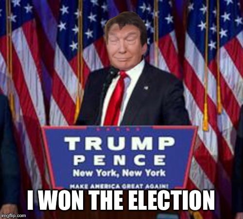 10-trump win | I WON THE ELECTION | image tagged in 10-trump win | made w/ Imgflip meme maker