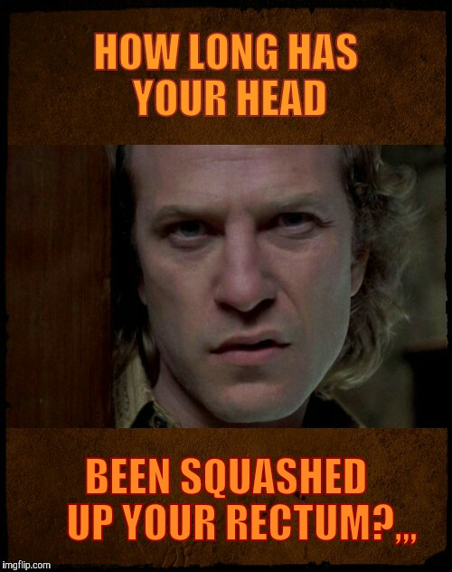 HOW LONG HAS YOUR HEAD BEEN SQUASHED     UP YOUR RECTUM?,,, | image tagged in buffalo bill,are you serious | made w/ Imgflip meme maker