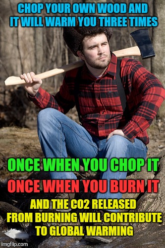 Solemn Lumberjack | CHOP YOUR OWN WOOD AND IT WILL WARM YOU THREE TIMES AND THE CO2 RELEASED FROM BURNING WILL CONTRIBUTE TO GLOBAL WARMING ONCE WHEN YOU BURN I | image tagged in memes,solemn lumberjack | made w/ Imgflip meme maker