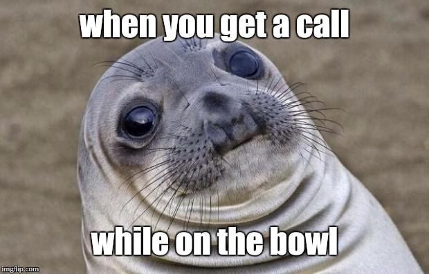 Awkward Moment Sealion Meme | when you get a call while on the bowl | image tagged in memes,awkward moment sealion | made w/ Imgflip meme maker