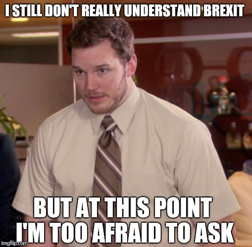 Afraid To Ask Andy Meme | I STILL DON'T REALLY UNDERSTAND BREXIT BUT AT THIS POINT I'M TOO AFRAID TO ASK | image tagged in memes,afraid to ask andy | made w/ Imgflip meme maker