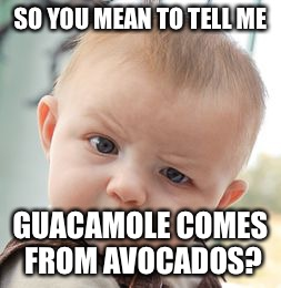 Skeptical Baby Meme | SO YOU MEAN TO TELL ME GUACAMOLE COMES FROM AVOCADOS? | image tagged in memes,skeptical baby | made w/ Imgflip meme maker