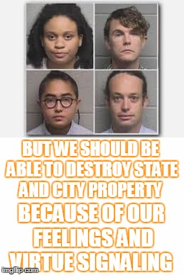 BUT WE SHOULD BE ABLE TO DESTROY STATE AND CITY PROPERTY BECAUSE OF OUR FEELINGS AND VIRTUE SIGNALING | made w/ Imgflip meme maker