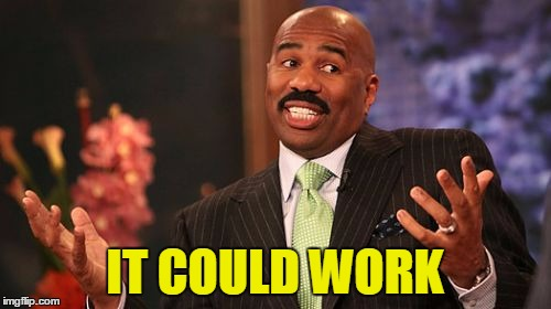 Steve Harvey Meme | IT COULD WORK | image tagged in memes,steve harvey | made w/ Imgflip meme maker