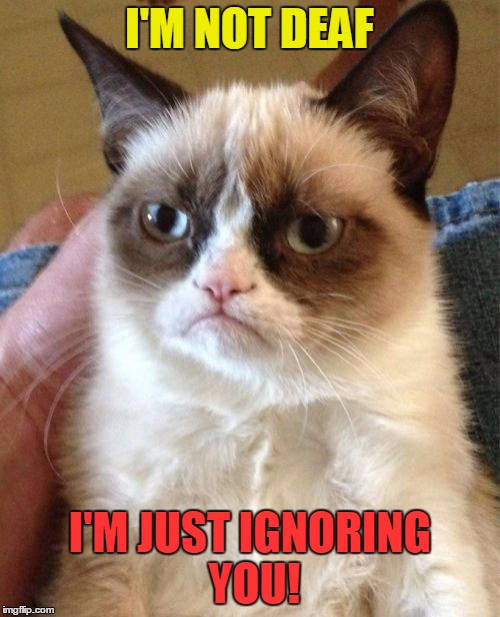 Grumpy Cat |  I'M NOT DEAF; I'M JUST IGNORING YOU! | image tagged in memes,grumpy cat,funny,ignore,deaf | made w/ Imgflip meme maker