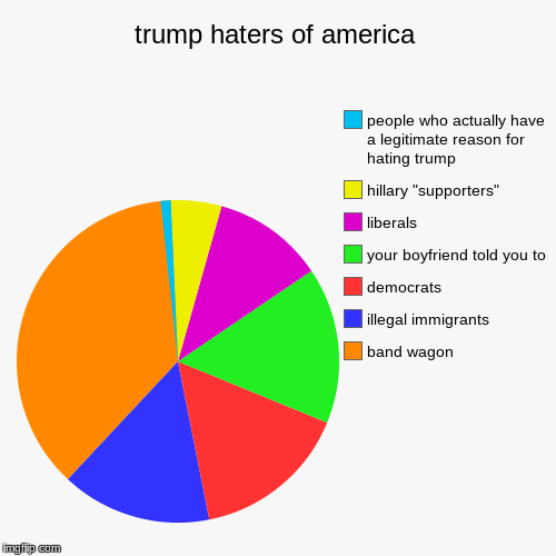 "trump haters of america | band wagon, illegal immigrants, democrats, your boyfriend told you to, liberals, hillary ""supporters"", people who  