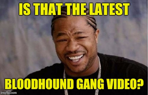 Yo Dawg Heard You Meme | IS THAT THE LATEST BLOODHOUND GANG VIDEO? | image tagged in memes,yo dawg heard you | made w/ Imgflip meme maker