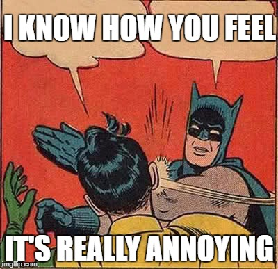 Batman Slapping Robin Meme | I KNOW HOW YOU FEEL IT'S REALLY ANNOYING | image tagged in memes,batman slapping robin | made w/ Imgflip meme maker
