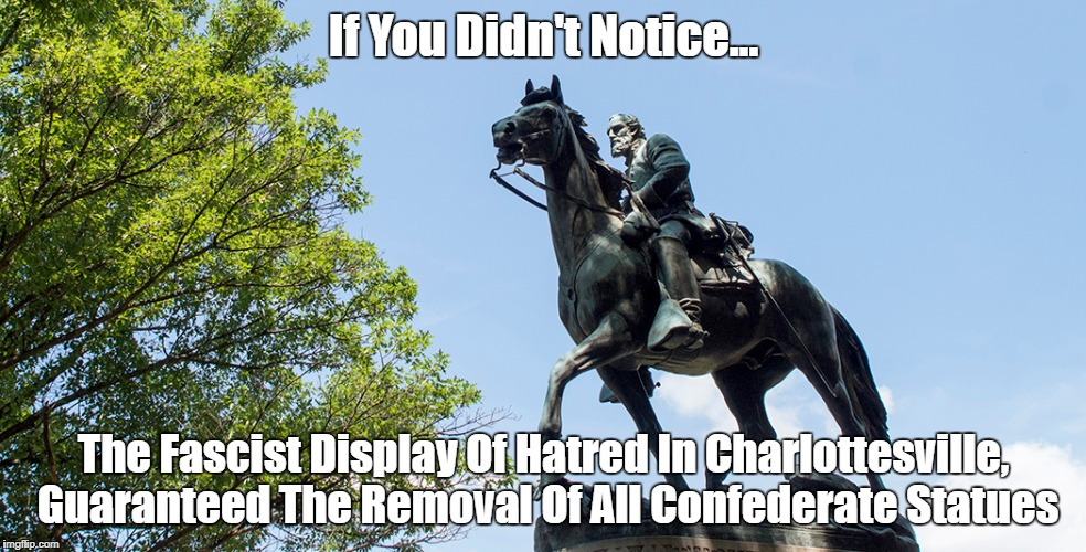 If You Didn't Notice... The Fascist Display Of Hatred In Charlottesville, Guaranteed The Removal Of All Confederate Statues | made w/ Imgflip meme maker