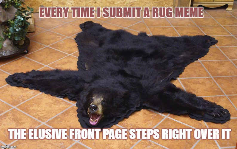 I wish I was a Koala | EVERY TIME I SUBMIT A RUG MEME THE ELUSIVE FRONT PAGE STEPS RIGHT OVER IT | image tagged in memes,bears,rug,carpet | made w/ Imgflip meme maker