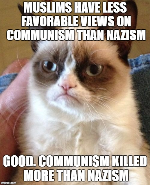 Grumpy Cat Meme | MUSLIMS HAVE LESS FAVORABLE VIEWS ON COMMUNISM THAN NAZISM GOOD. COMMUNISM KILLED MORE THAN NAZISM | image tagged in memes,grumpy cat,muslims,muslim,communism,nazi | made w/ Imgflip meme maker