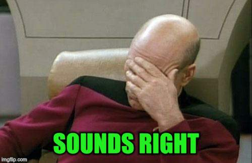 Captain Picard Facepalm Meme | SOUNDS RIGHT | image tagged in memes,captain picard facepalm | made w/ Imgflip meme maker
