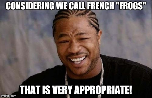 "Yo Dawg Heard You Meme | CONSIDERING WE CALL FRENCH ""FROGS"" THAT IS VERY APPROPRIATE! 