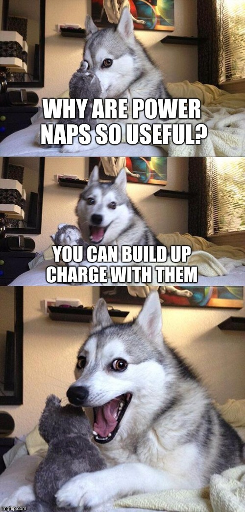 Bad Pun Dog Meme | WHY ARE POWER NAPS SO USEFUL? YOU CAN BUILD UP CHARGE WITH THEM | image tagged in memes,bad pun dog | made w/ Imgflip meme maker