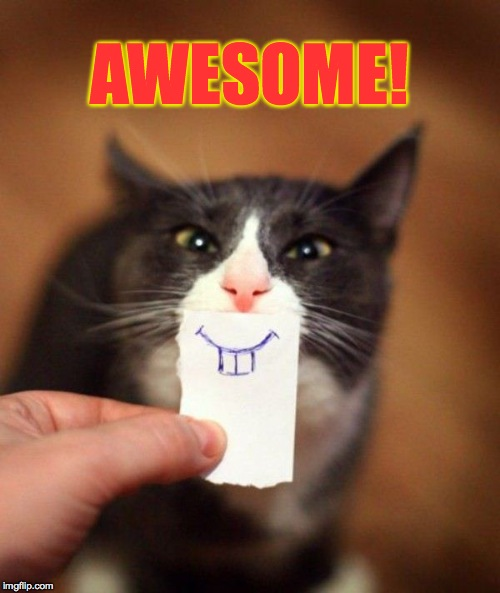 AWESOME! | made w/ Imgflip meme maker