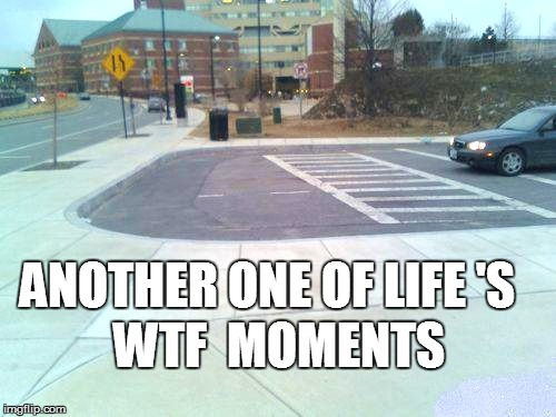 WTF | WTF  MOMENTS ANOTHER ONE OF LIFE 'S | image tagged in funny | made w/ Imgflip meme maker