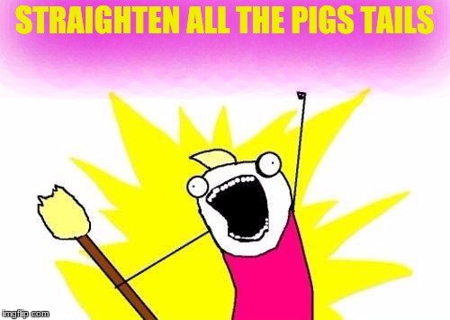 X All The Y Meme | STRAIGHTEN ALL THE PIGS TAILS | image tagged in memes,x all the y | made w/ Imgflip meme maker