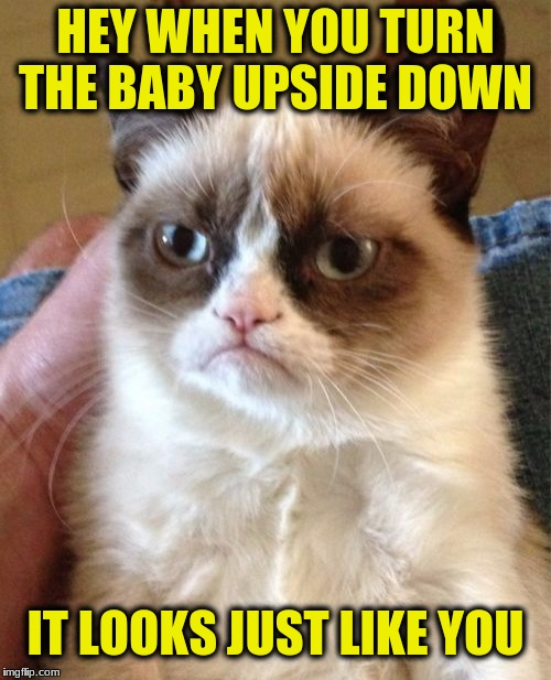 Grumpy Cat Meme | HEY WHEN YOU TURN THE BABY UPSIDE DOWN IT LOOKS JUST LIKE YOU | image tagged in memes,grumpy cat | made w/ Imgflip meme maker