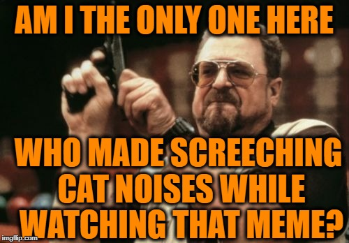 Am I The Only One Around Here Meme | AM I THE ONLY ONE HERE WHO MADE SCREECHING CAT NOISES WHILE WATCHING THAT MEME? | image tagged in memes,am i the only one around here | made w/ Imgflip meme maker